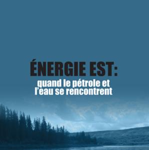 Ottawa — L'eau potable, l'habitat des bélugas et les bassins de natation et de pêche seront tous en danger si le projet Oléoduc Énergie Est de TransCanada est approuvé, prévient un nouveau rapport.